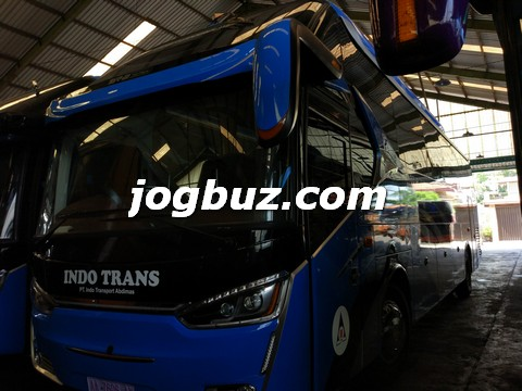 Sewa Bus Shd Indo Trans16