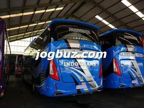 Sewa Bus Shd Indo Trans17