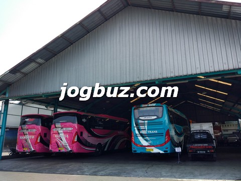 Sewa Bus Shd Indo Trans34