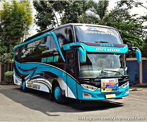 Bus Pariwisata Shd Kupu Kupu Ayu Biru