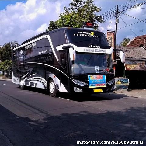 Bus Pariwisata Shd Kupu Kupu Ayu Hitam
