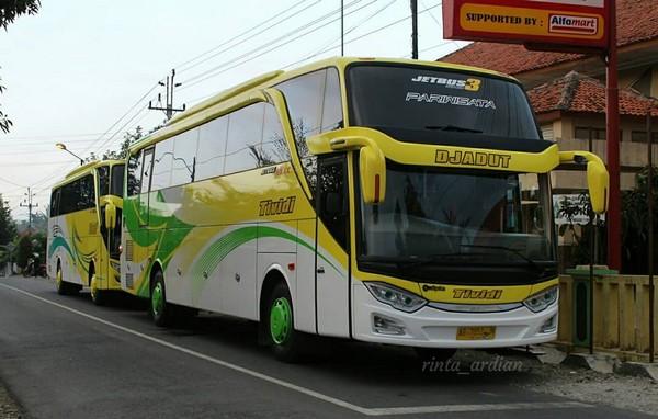 Profil Bus Pariwisata Tividi