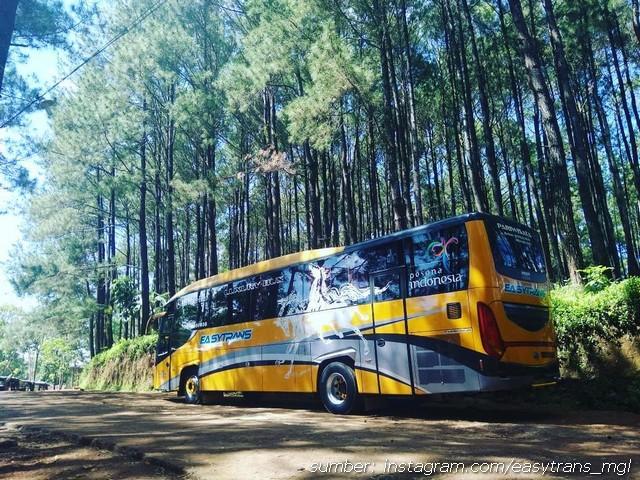 Bus Easy Trans 18