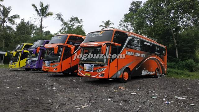 Harga Sewa Bus Pariwisata Shd Kurnia Trans Jaya