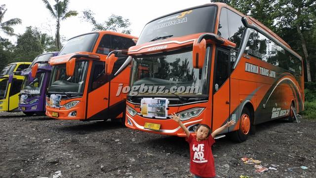 Nomor Telepon Bus Shd Kurnia Trans Jaya