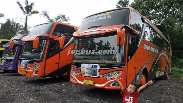 Sewa Bus Pariwisata Shd Jetbus 3+ Kurnia Trans Jaya